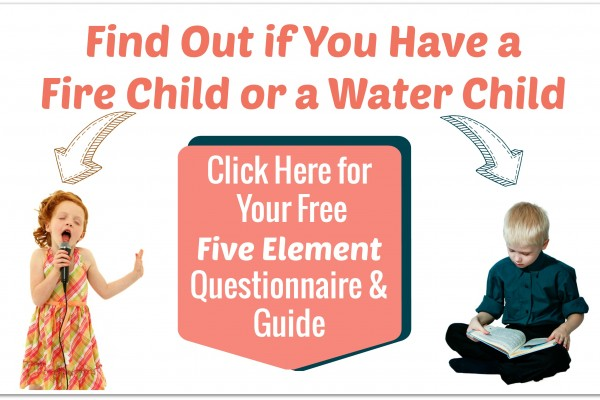 Use the Five Elements to Bring out the Best in Your Child